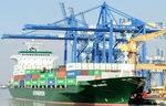 Việt Nam xuất siêu năm thứ hai liên tiếp từ khi gia nhập WTO