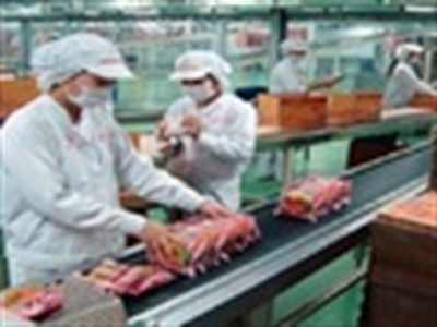Các công ty mì gói im lặng sau thông tin nhiễm chất gây sỏi thận