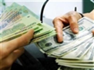 Năm 2014: Tỉ giá hối đoái dao động chỉ 1%?