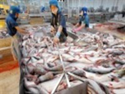 Nga cấm nhập khẩu cá tra từ Việt Nam từ 31/1