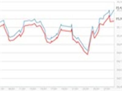Giá USD tự do tăng vọt, giữ giá vàng SJC