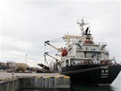 Tàu chở container lớn nhất đã cập Cảng Quy Nhơn