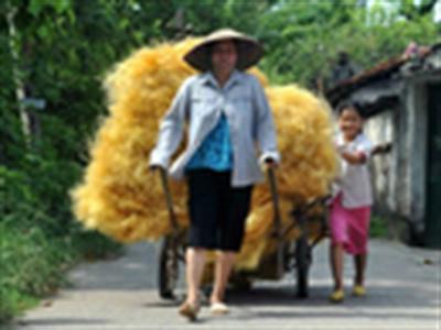 Gần 10% trẻ Việt Nam phải lao động