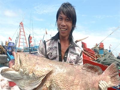 Thủy sản Việt Nam đặt mục tiêu xuất khẩu hơn 8 tỷ USD