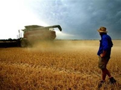 50 triệu ha đất nông nghiệp Australia có sở hữu nước ngoài