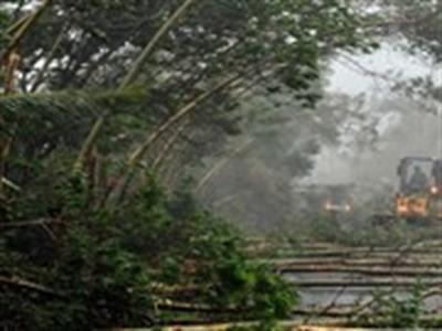 Siêu bão Rammasun đổ bộ vào Trung Quốc, 1 người thiệt mạng