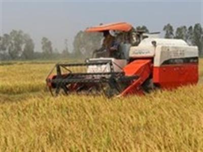 Thêm gần 2.000 tỷ cho vay thí điểm nông nghiệp công nghệ cao