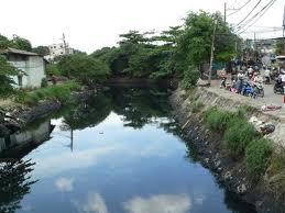 TPHCM yêu cầu bàn giao mặt bằng dự án cải tạo kênh và đường dọc kênh Tân Hóa-Lò Gốm