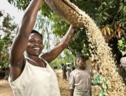Nghèo đói trên thế giới: Sự sụt giảm đáng khích lệ