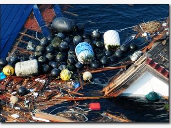 1,5 triệu tấn rác Nhật Bản tràn đến Bắc Mỹ