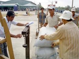 Đồng Tháp đã thu mua tạm trữ hơn 77.000 tấn gạo