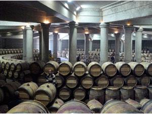 Chất lượng rượu Bordeaux năm nay giảm, nhưng nhà đầu tư thu lợi