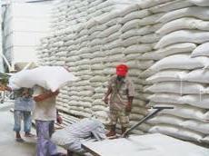 Việt Nam phê duyệt Hiệp định Quỹ dự trữ gạo khẩn cấp ASEAN+3