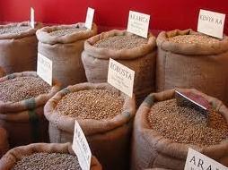 Giá cà phê xuống thấp vì bị bán mạnh