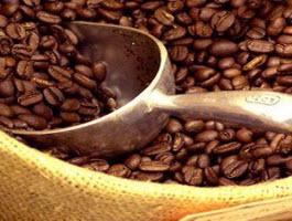 Thái Hòa - Từ công ty xuất khẩu cà phê hàng đầu đến nguy cơ bị phá sản