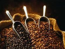 Nhu cầu cà phê toàn cầu tăng 2% trong niên vụ 2011-2012