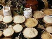 Giá lúa gạo ĐBSCL giảm mạnh trở lại