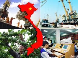 Bài học từ triển khai Nghị quyết 11, những đánh giá từ World Bank