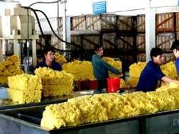Giá cao su xuất khẩu sang Trung Quốc tăng tới 1.100 nhân dân tệ/tấn