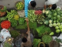 Nga giúp đảm bảo an ninh lương thực cho châu Á