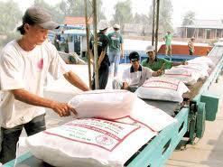 Xuất khẩu gạo Cần Thơ 5 tháng đầu năm giảm 30% so cùng kỳ