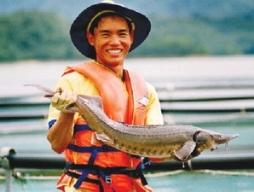 Bình Thuận có tiềm năng xuất khẩu đặc sản cá tầm