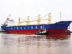 Reuters: Vinalines dấy lên hồi chuông cảnh báo tình trạng nợ của Việt Nam