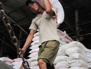 Indonesia đặt mục tiêu không nhập gạo trong 2012