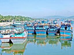 Bình Định duyệt quy hoạch cảng biển Tam Quan hơn 13ha