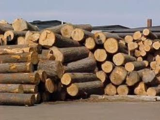 Việt Nam khó đạt mục tiêu xuất khẩu gỗ năm nay