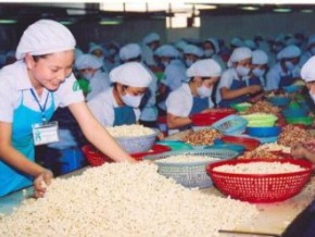 Nhập siêu của Việt Nam từ Ấn Độ giảm mạnh