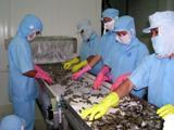 4 doanh nghiệp thuỷ sản bị kiểm tra chặt chất lượng