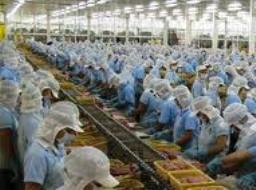 Công ty mẹ ANV đạt lợi nhuận 24 tỷ đồng nửa đầu năm 2012