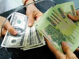 ANZ dự báo VND mất giá 2% trong 2012