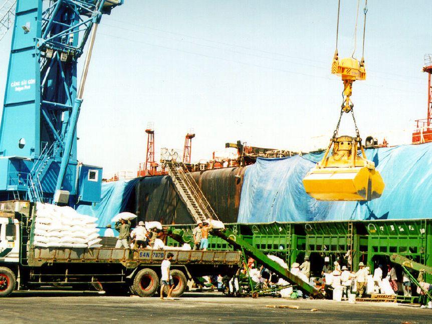 Lượng hàng hóa thông qua cảng Hải Phòng 6 tháng đầu năm tăng 7,2%