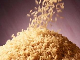 Tổng hợp thông tin thị trường lúa gạo thế giới ngày 27/7