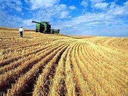 Nga hỗ trợ cho nông dân 14 tỷ rúp sau đợt hạn hán