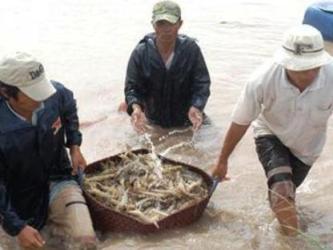 Ủy ban Châu Âu sẽ thanh tra thủy sản nuôi của Việt Nam