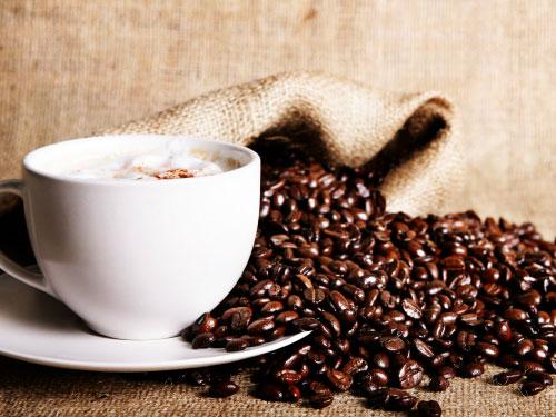 Giá cà phê trong nước tăng 100 nghìn đồng/tấn