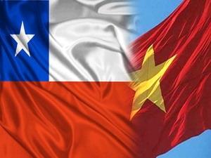 Trao đổi thương mại Việt Nam - Chile 6 tháng đầu năm tăng gần 40%