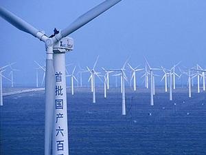 Trung Quốc đứng đầu thế giới sản xuất phong điện