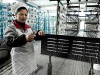 Lợi nhuận ngành công nghiệp Trung Quốc giảm mạnh