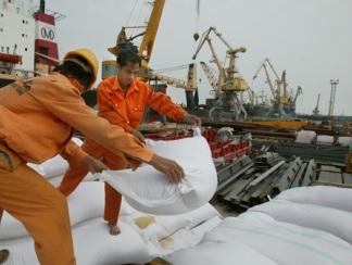 Giá gạo xuất khẩu của Việt Nam bắt đầu giảm