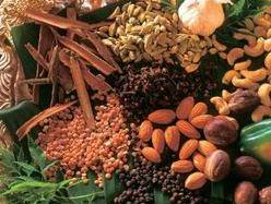 Miễn thuế nhập khẩu nông sản chưa chế biến trồng tại Campuchia
