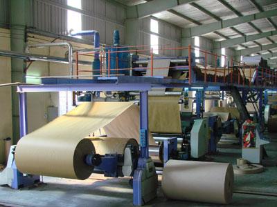 Kon Tum quy hoạch vùng nguyên liệu gần 75.000 ha cho dự án giấy Tân Mai