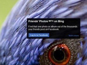 Bing bổ sung tính năng mới cho phép tìm ảnh trên Facebook