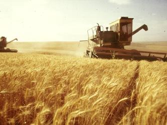 Hội nghị toàn cầu lần thứ hai về nông nghiệp, an ninh lương thực và biến đổi khí hậu