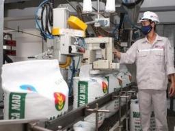 DPM không được chấp thuận mua nhà máy đạm Cà Mau