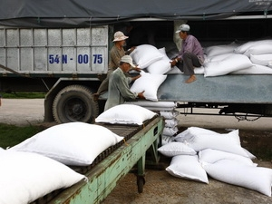 Kiểm soát xuất khẩu gạo sang Trung Quốc qua đường tiểu ngạch