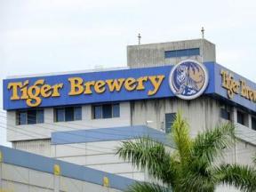 Tỷ phú Thái Lan bất ngờ ủng hộ Heineken mua bia Tiger